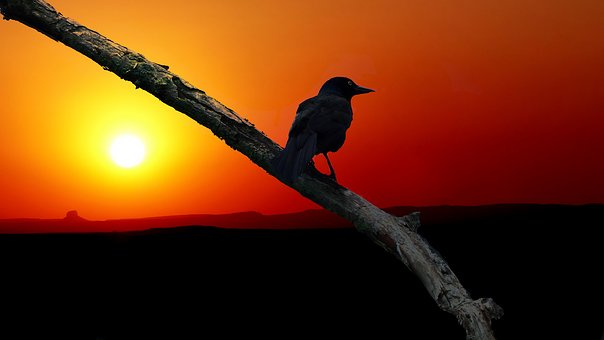 sunset 3800270  340
